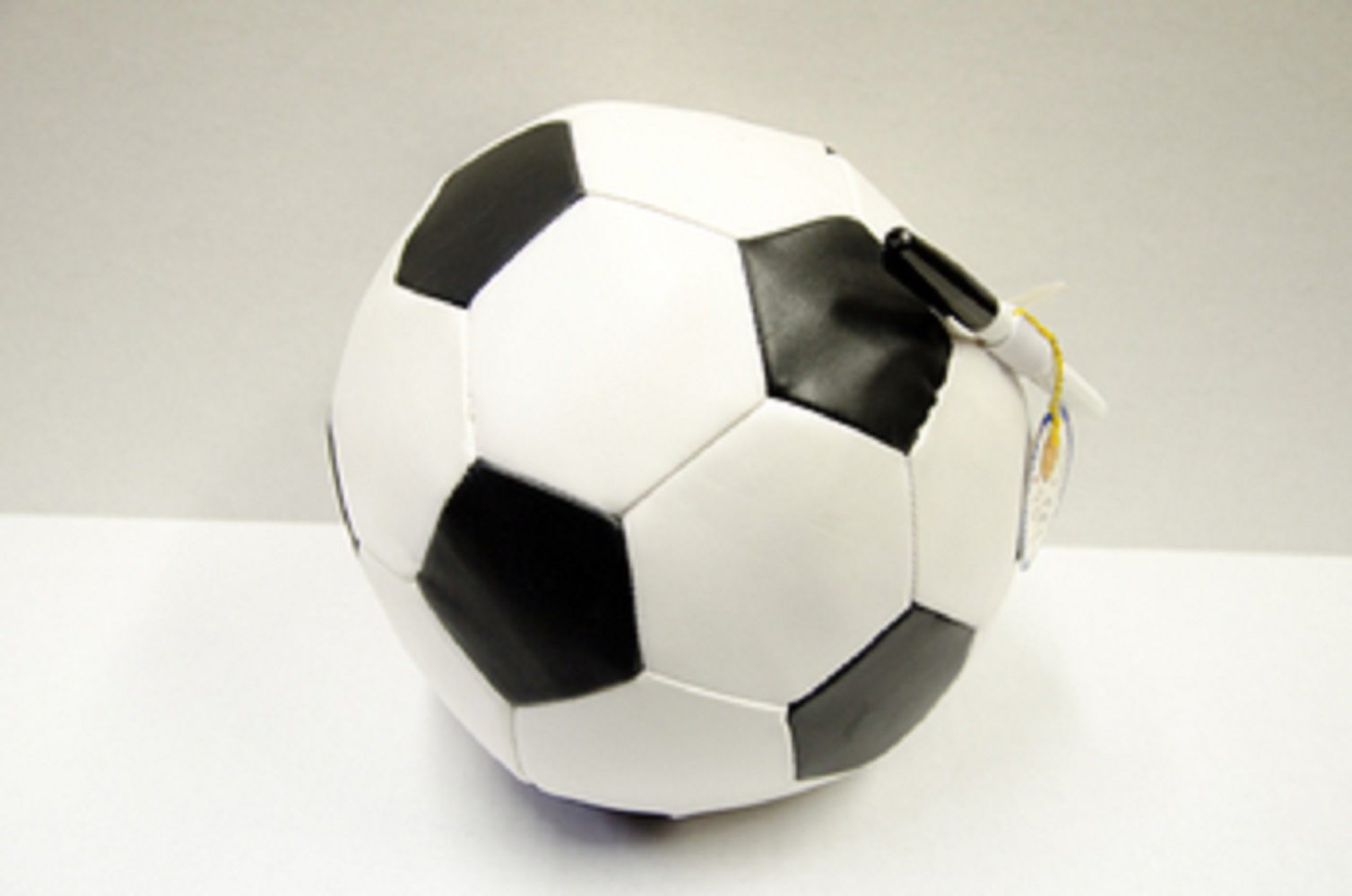 Bunk Junk Soccer Ball Bag